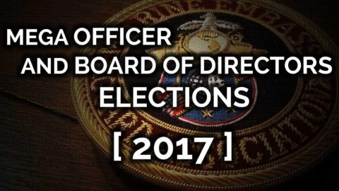 MEGA OFFICER AND BOARD OF DIRECTOR ELECTIONS